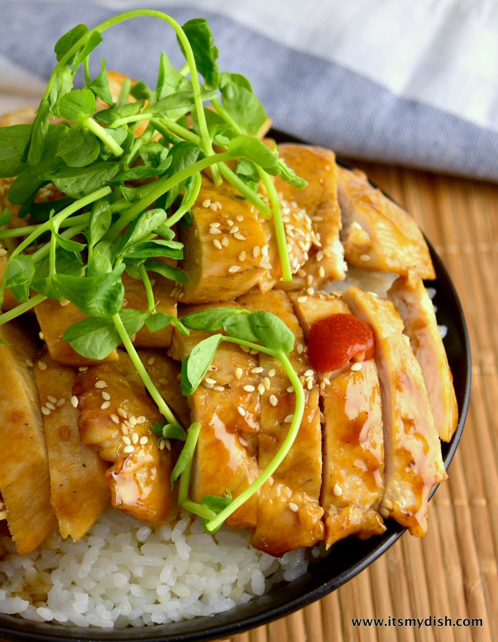 teriyaki chicken - closeup2